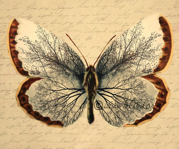 Vintage Butterfly Unique image of tree in the wings by hartthings, $15.00...would like as tattoo....