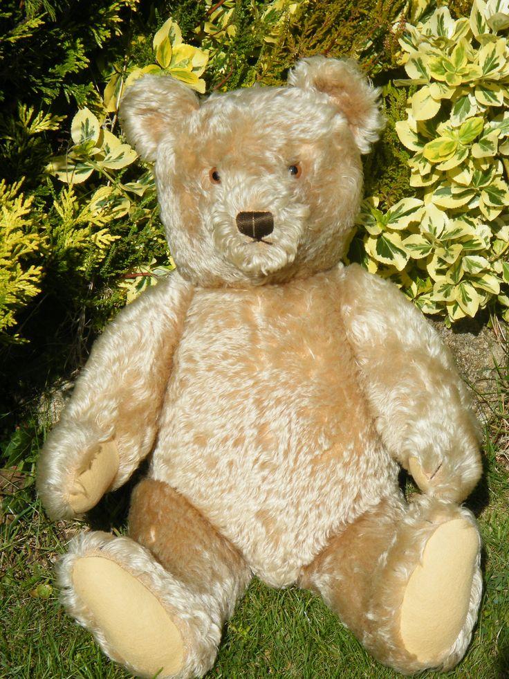 39 helma 39 huge old steiff bear for sale at bear pinterest. Black Bedroom Furniture Sets. Home Design Ideas