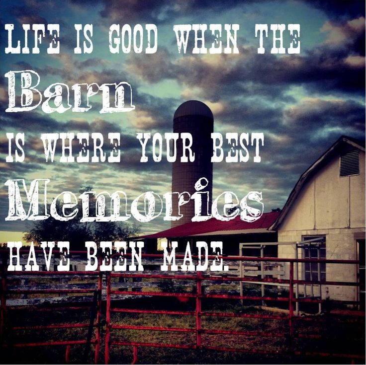 Life is good when the Barn is where your best memories have been made  ~TK Cattle Company~  www.tkcattlecompany.com