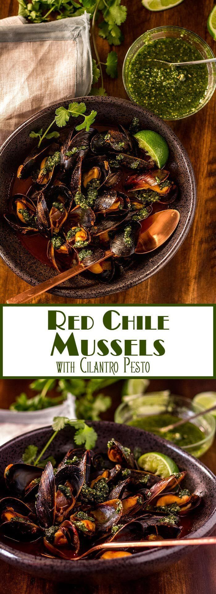 A little kick from New Mexico red chile powder sets my Red Chile Mussels with Cilantro Pesto apart from all the rest... finished with a vibrant cilantro pesto, they're sure to be a new favorite for bivalve lovers! Mussels | Seafood Recipes | Quick Seafood | NM Red Chile | Main Dishes | Gluten Free Mains via @TamaraBMS