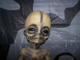 Resultado de imagem para área 51 aliens