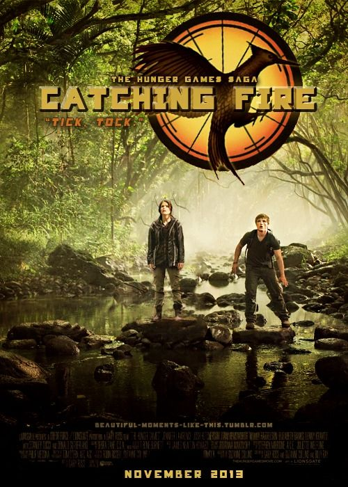 YAYAYY: Catch Fire Posters, The Hunger Games, Catching Fire, Hunger Games Trilogy, Hungergames, Art Posters, Fans Art, Games Series, Catch Fire Movie