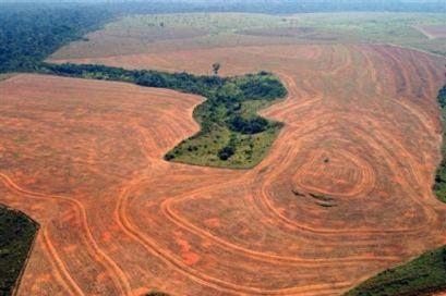 Déforestation du monde   La FAO utilise les dernières techniques de télédétection pour suivre les changements.