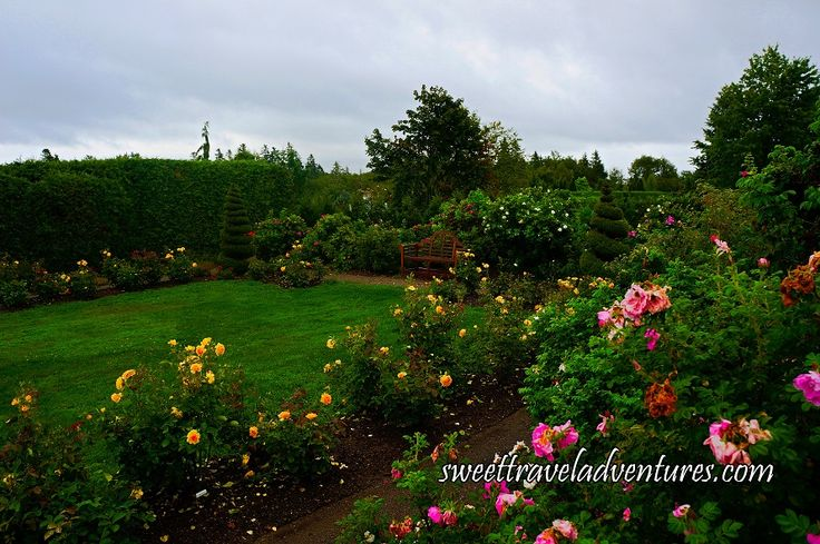 Rose Garden in Kingsbrae Garden in St. Andrews by-the-Sea, New Brunswick, Canada