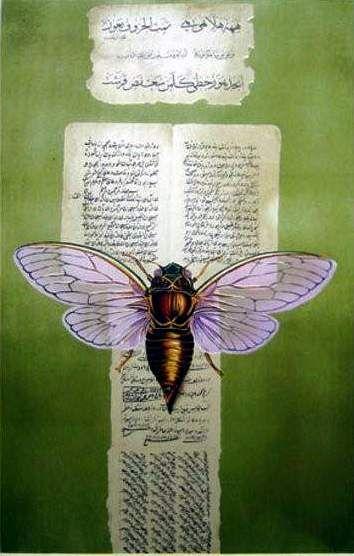 inan_cicada