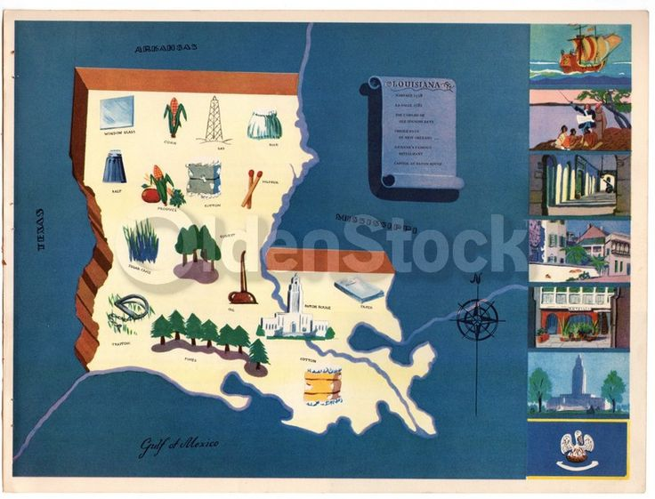 Louisiana State Vintage Graphic Art Illustrated Map of Louisiana 1939