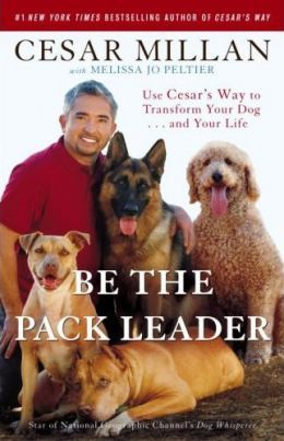 Cesar Millan recommends using a consistent non-mark (the tsch sound) when a dog is misbehaving. If the dog continues to misbehave, it is important to follow-up the non-mark with some action (e.g. a body block or time-out) so that the dog understands that there are consequences for ignoring a non-mark.
