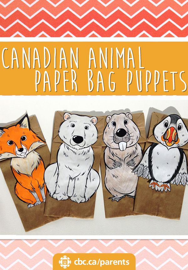Paper bags are the perfect base for puppets! Kids can make a fox, a polar bear, a beaver and a puffin and put on their very own animal puppet shows.
