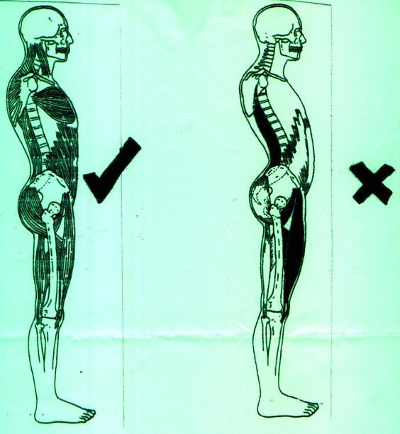 5 Yoga fixes for bad posture- think of your pelvis as a wine glass, don`t spill it. Stretches for preventing a hunched back.