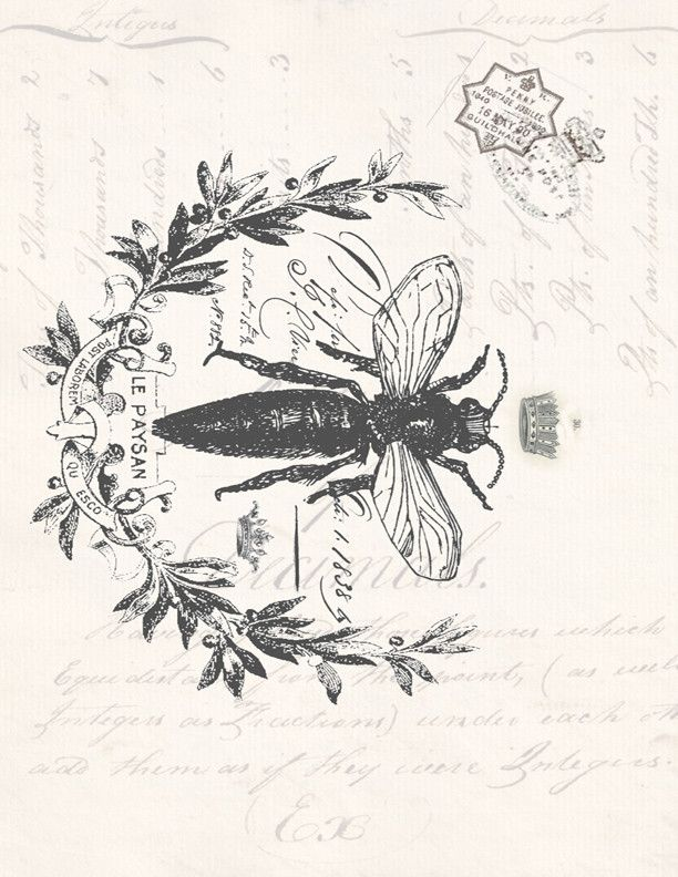 Botanical Print French Bee                                                                                                                                                                                 More