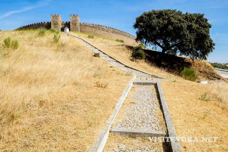 Arraiolos chama-nos ao Alentejo. Conheça o concelho e as nossas sugestões para visitar Arraiolos, o seu castelo, os tapetes, as terras de montado.