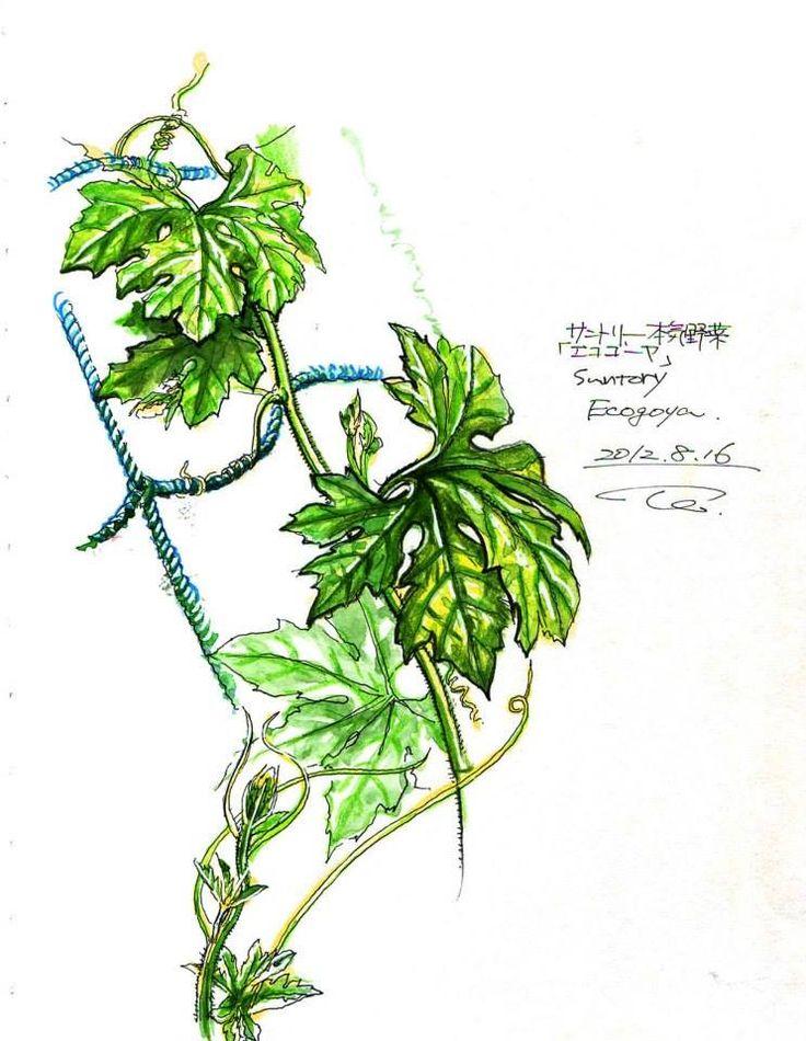 Illust by Tetsuro Honda