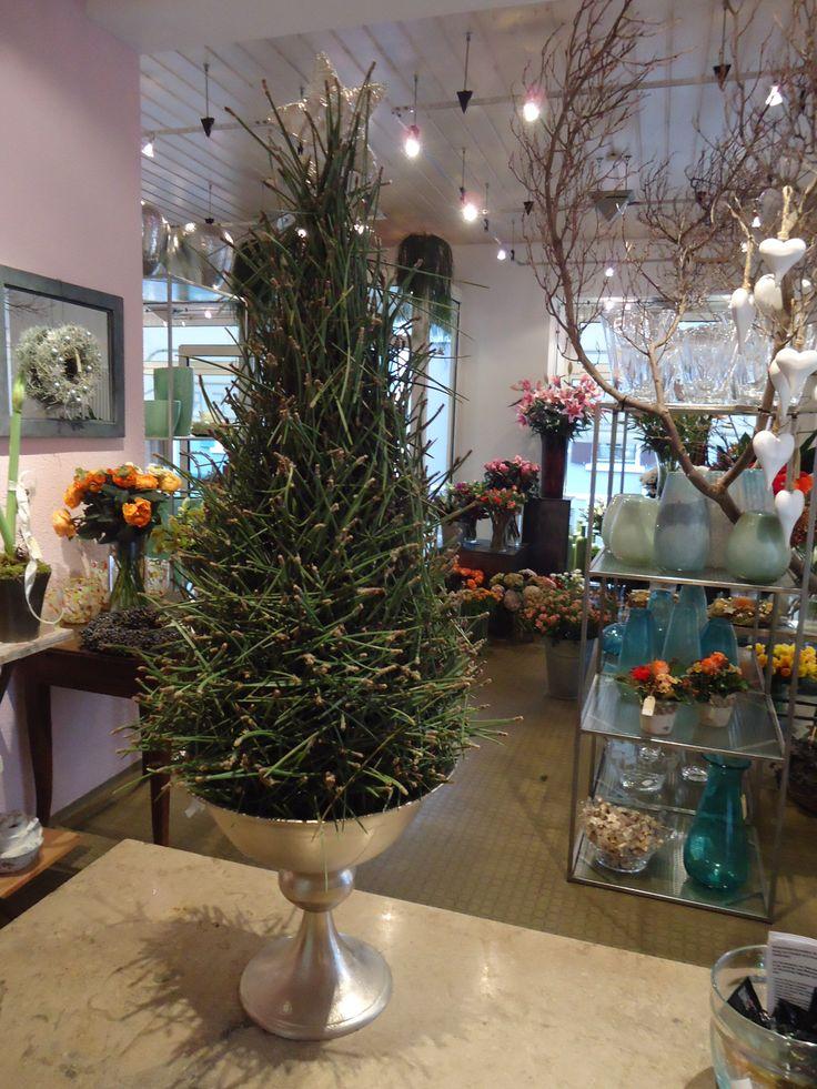 109 besten floristik weihnachten bilder auf pinterest. Black Bedroom Furniture Sets. Home Design Ideas