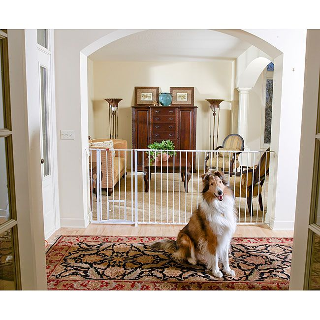 Keep Your Large Dog Confined To A Specific Area Of Your