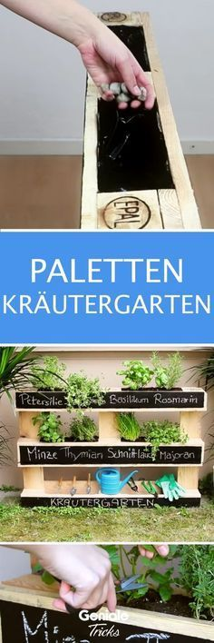 Mit diesem einfachen Projekt zauberst du dir einen echten Hingucker für deinen Balkon oder deinen Garten. – #Balkon #deinen #diesem #dir #du #echten #einen #einfachen #für #Garten #Hingucker #jardin #mit #oder #Projekt #zauberst   – Eleanor