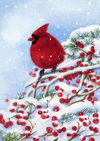 la-christmas-cardinal-bird