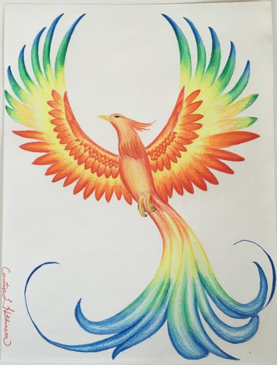 """Prismacolor Phoenix drawing 8 1/2"""" x 11"""""""