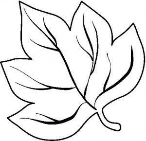 leaves coloring page part 2 - Leaf Coloring Pages Preschool