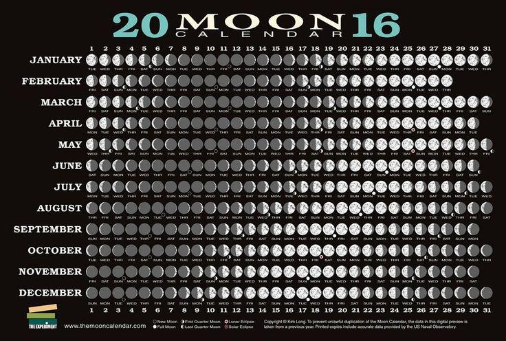 Calendario lunar de siembra 2016 | Plantas