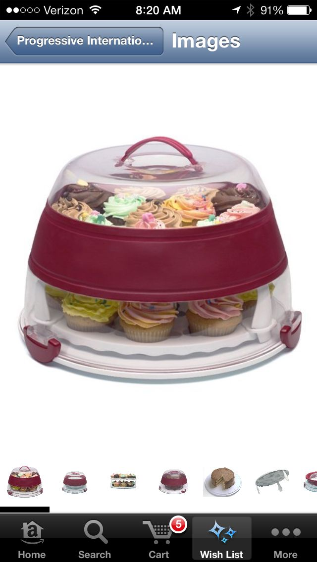 Cake Carrying Case