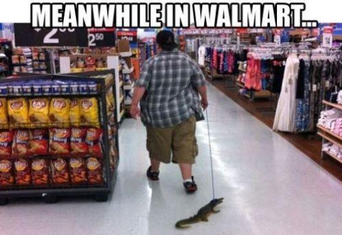 wal mart 4 Meanwhile at Walmart (25 photos)