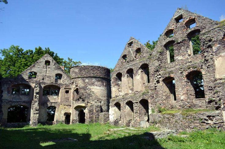 Świny - ruiny zamku