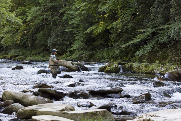 100-Fish Days: Tips on Fishing Cherokee by Michael Bradley of Fly Fishing Team USA Che...