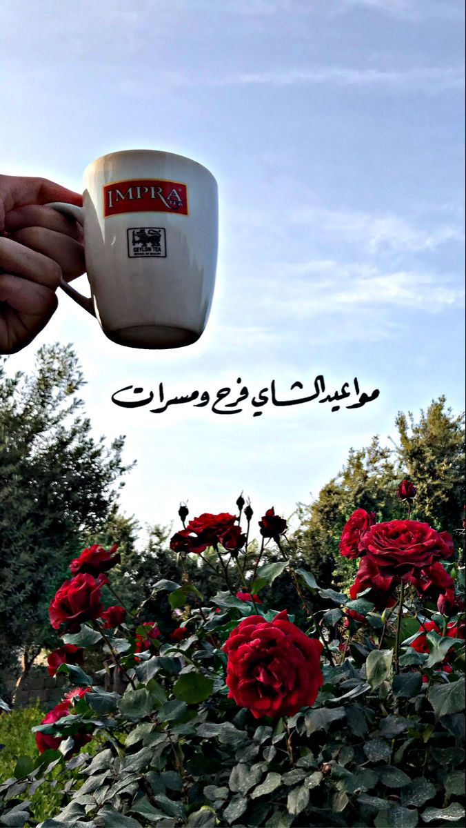 Pin By Mohammad Assem محمد عاصم On Tea Cooking Timer Tea Red Peppercorn