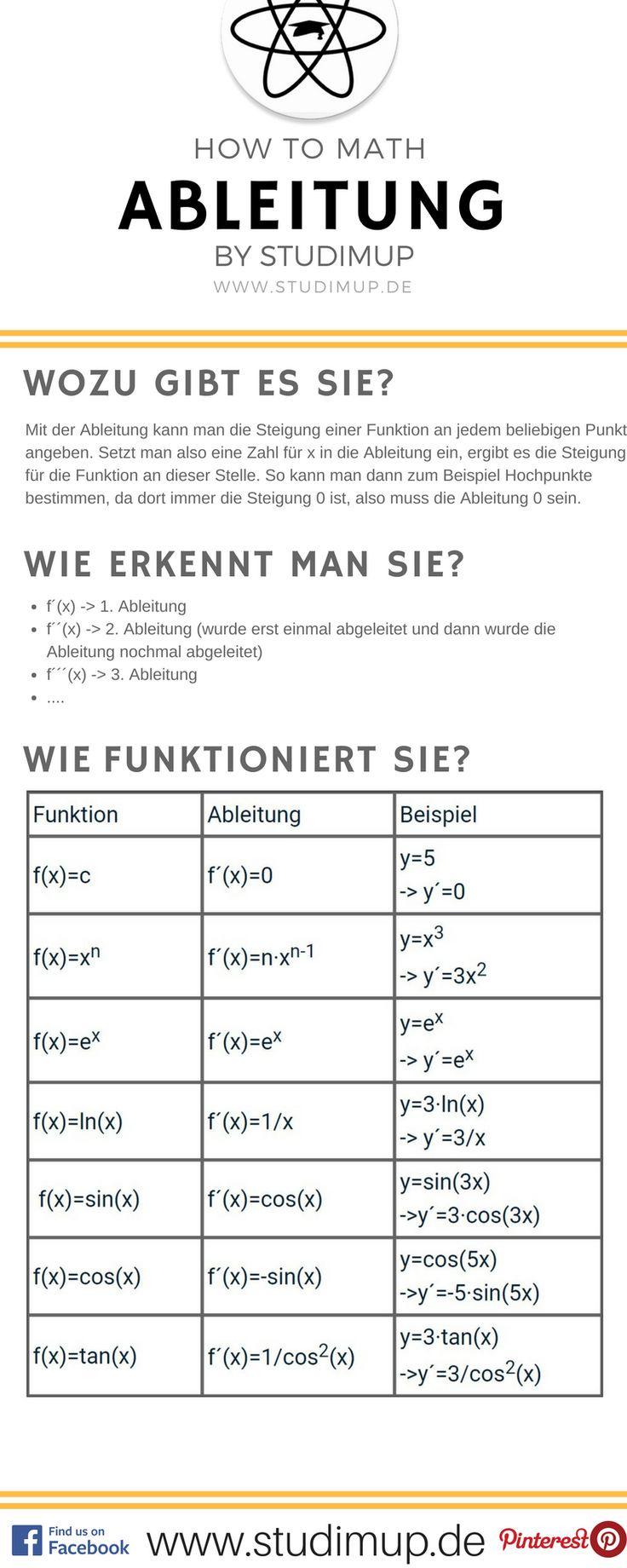 Großartig Schülerbeispiel Fortsetzen Galerie - Entry Level Resume ...