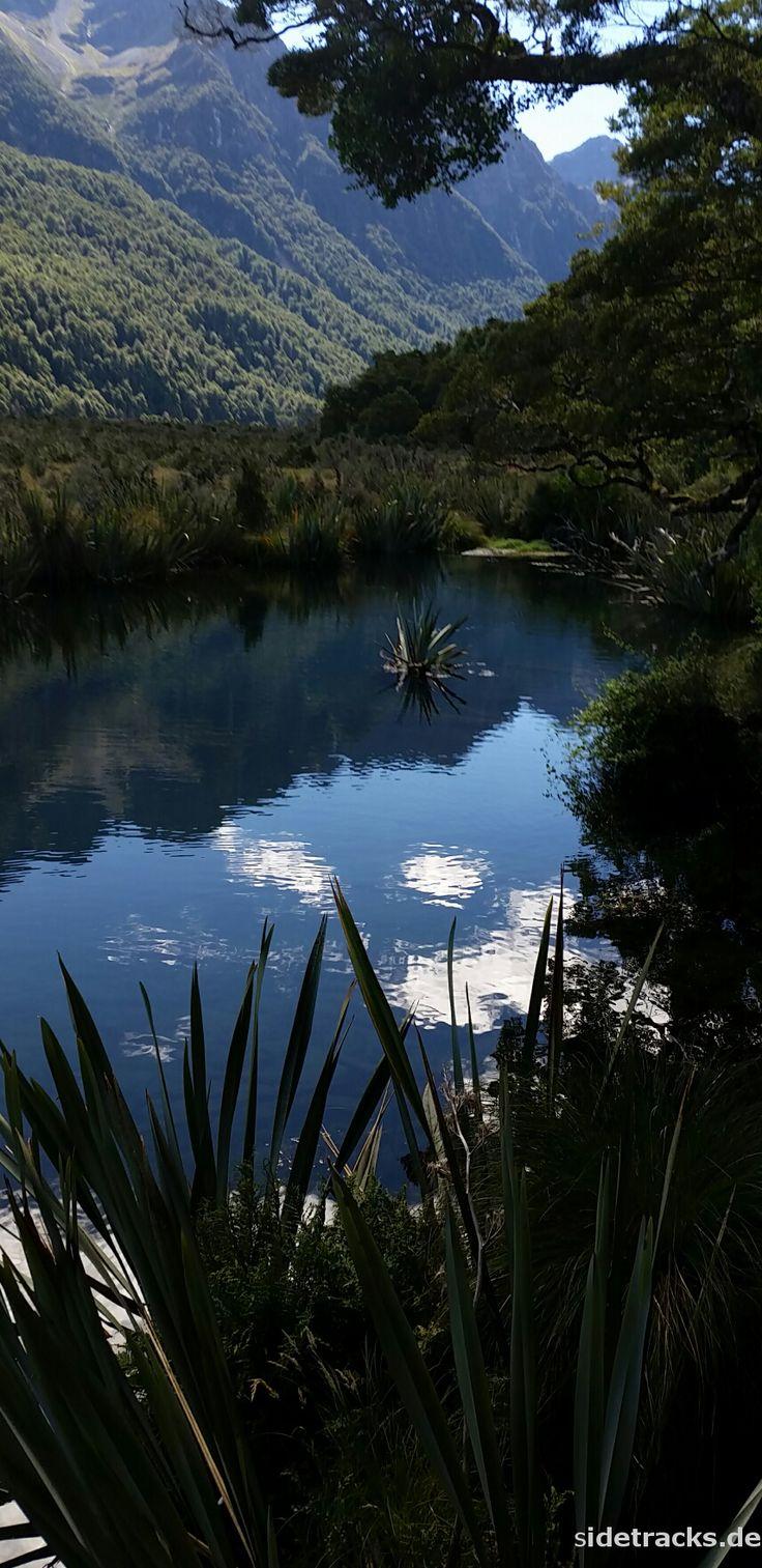 Hollyford Valley - Südinsel, Neuseeland. Den richtigen Reisebegleiter findet ihr bei uns: https://www.profibag.de/reisegepaeck/?p=1
