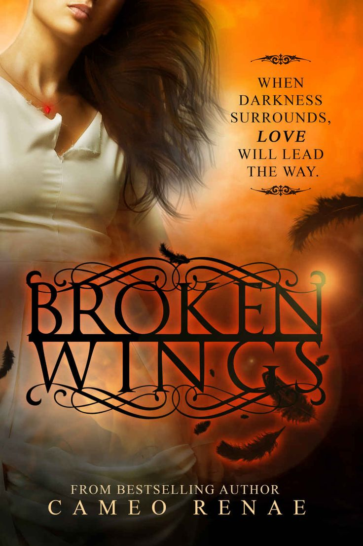 Amazon: Broken Wings (hidden Wings Series Book Two) Ebook: Cameo