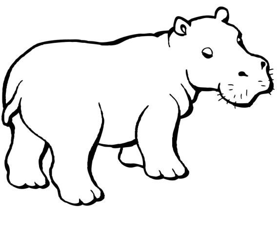 Hippo Coloring Page Animal Caricature Hippo Tattoo Hippo Drawing