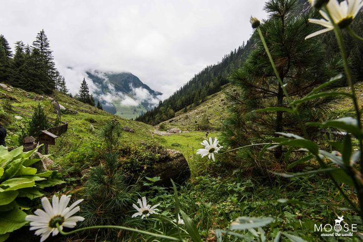 Eine Wanderung zur Maxhütte in    Ginzling im Zillertal