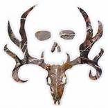Camo Bone Collector Logo