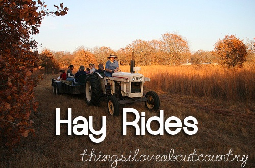 Hay rides.  We use to do this too.  So much fun.  Plus, going to a cane grinding, pulling taffy!!  Those were certainly the good old days.South Carolina was so great!
