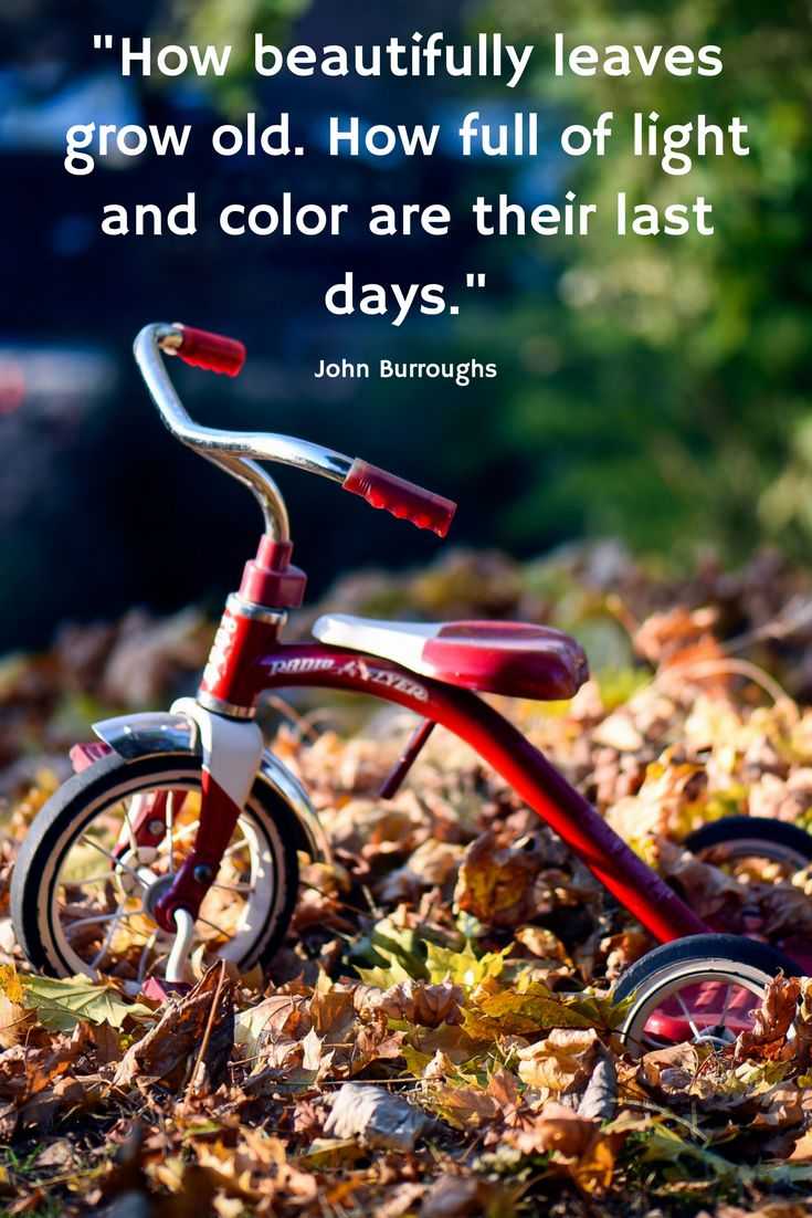 There's something particularly refreshing about each new Fall. So, here are 10 incredibly moving quotes about the most beautiful season of the year. https://withnaturalgusto.com/10-beautiful-autumn-quotes-images-for-the-fall/ Inspirational quotes about life, Inspirational quotes motivation, Motivational quotes for success,  Motivational quotes for life, Quotes, Quotes Deep, Quotes Inspirational