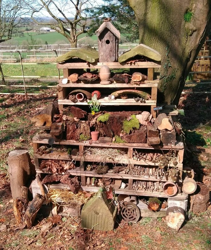 What a fantastic example of a bug hotel, this looks amazing! Why not try your hand and create a multi-storey hotel that's full of all sorts of natural materials, providing hidey-holes for creatures galore. Safe hideaways can be hard for wildlife to find in some gardens, and what better use for all your garden waste and odds and ends?