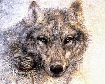 El Lobo Los Indios Americanos siempre han considerado a los lobos como maestros o señaladores de caminos. Los lobos son ferozmente leales a sus parejas y tienen un fuerte sentido de la familia a la vez que mantienen su individualidad. En las estrellas Lobo está representado por Sirio que muchas tribus aborígenes consideran ser el hogar de los Antiguos.Los hechiceros de lastribuscreían que convirtiéndose en un determinado animal adquirían todas sus virtudes las que dependían de la…