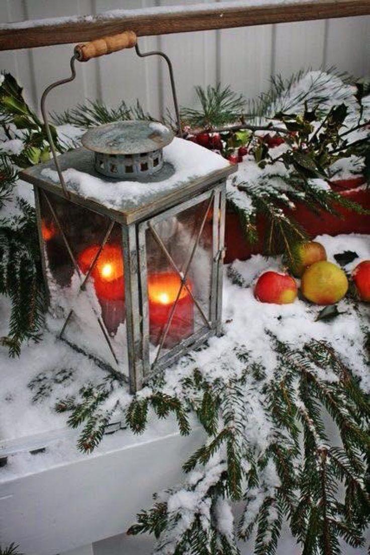~ Roter Wintertag ~   – Fotografie