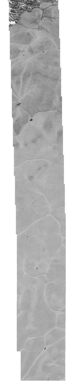 """Spektakuläre neue Bilder, die die Nasa vom Zwergplaneten Pluto veröffentlicht hat: Neben einem """"surfenden"""" Eisberg wurde dort auch ein merkwürdiges """"X"""" gesichtet. Erkunden Sie die Oberfläche selbst."""