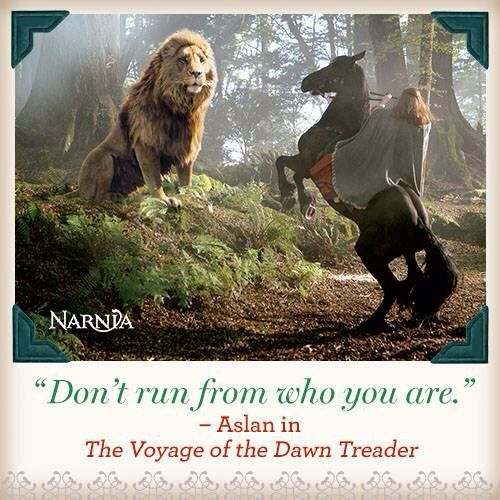 ~The Voyage Of The Dawn Treader~
