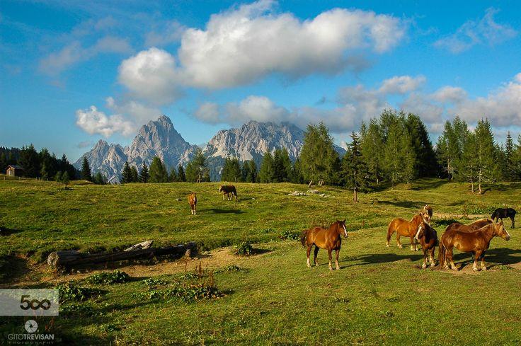 Dolomiti e cavalli by Gito Trevisan / 500px