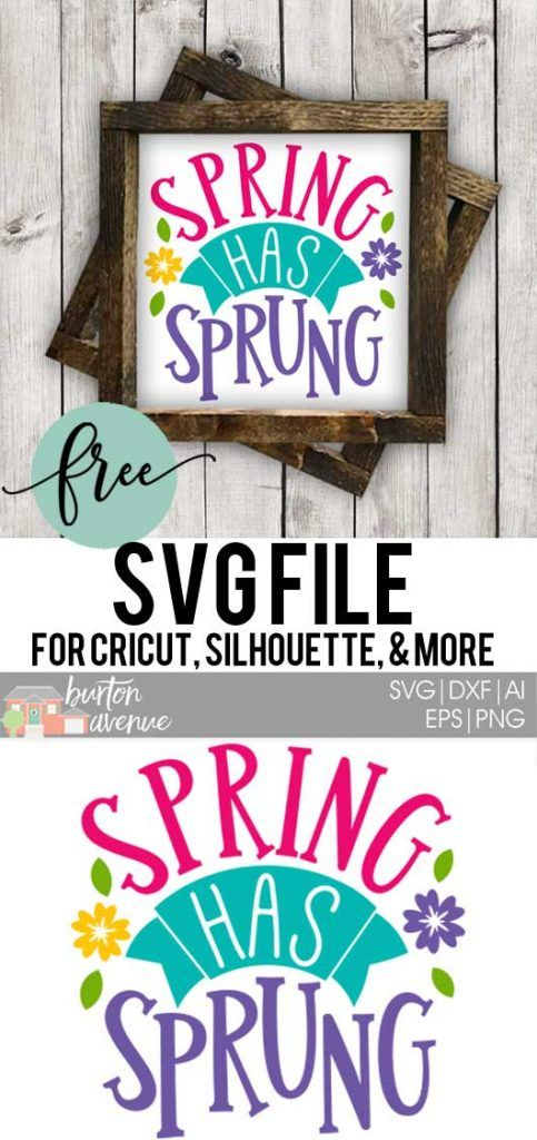 Download this free Spring has Sprung SVG file for your DIY spring projects. This free SVG file will work Cricut and Silhouette cutters.