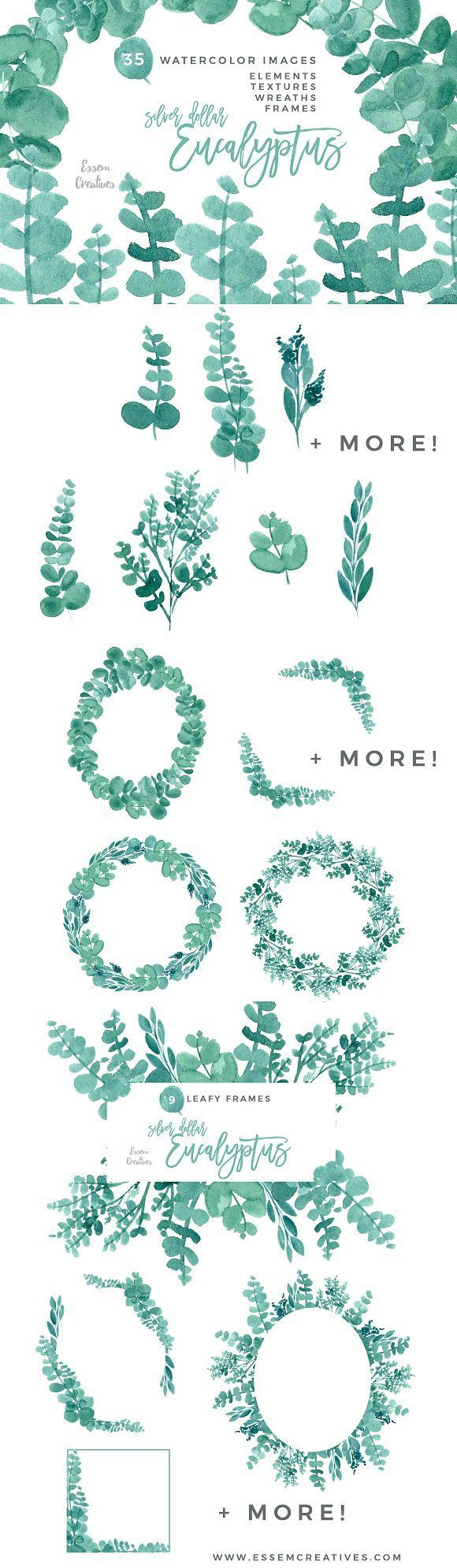 Eucalyptus Clipart Watercolor Leaves by Essem Creatives on @creativemarket - Eucalyptus Clipart, Watercolor Leaves Clip art, Wreaths, Frames, Greenery clipart, Rustic Wedding Invitation, Mint, Green, Stock Illustrations, Stock Graphics, Stock Eucalyptus