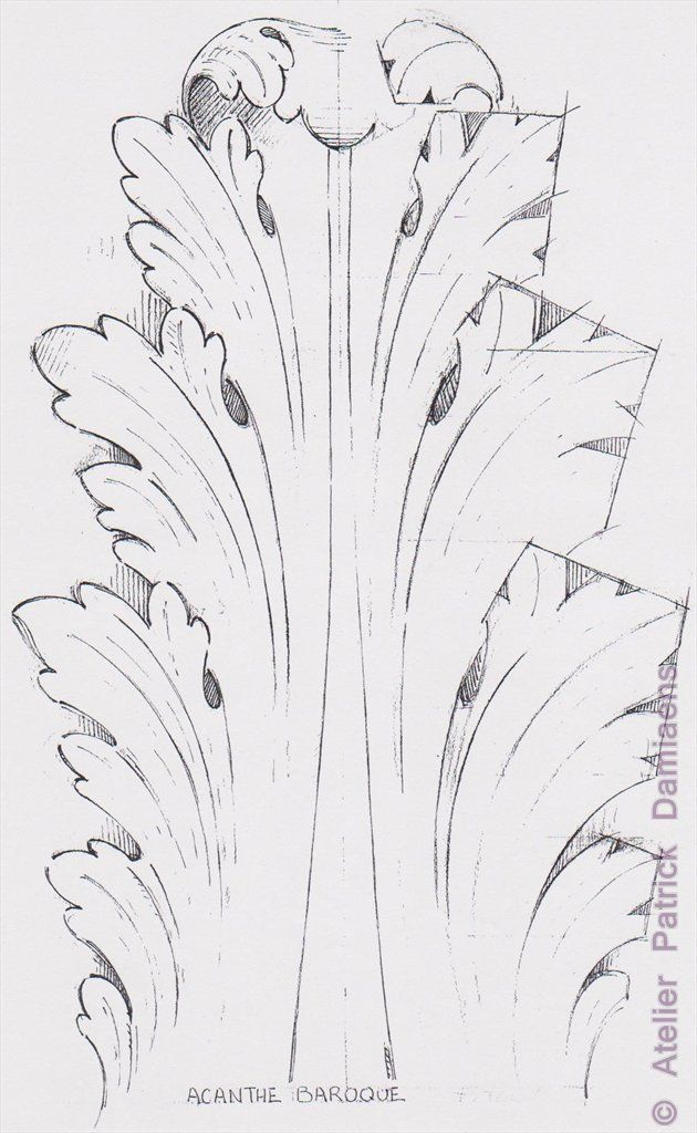 Ornamental woodcarver patrick damiaens the acanthus leaf for Acanthus leaf decoration
