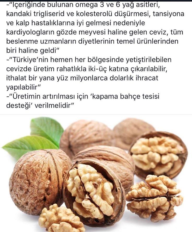 Www.balkanceviz.com