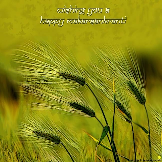 Dgreetings - Wish your friends Happy Makar Sankranti through this card.
