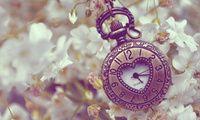 металл, сердечко, часы, карманные, Цветы, белые