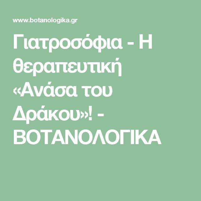 Γιατροσόφια - Η θεραπευτική «Ανάσα του Δράκου»! - ΒΟΤΑΝΟΛΟΓΙΚΑ