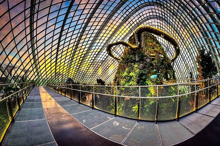 Justine Tyerman spends an afternoon at the mind-boggling Gardens by the Bay in Singapore where she marvels at the world's largest glasshouse and tallest indoor waterfall, and a forest of 'Supertrees', as part of a Singapore Airlines stopover package…